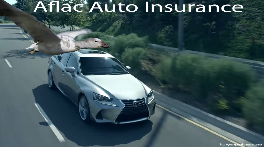 Aflac Auto Insurance